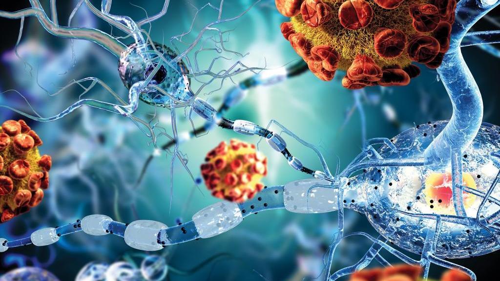 راهنمایی در مورد بیماری های خود ایمنی؛ آشنایی با 12 بیماری خود ایمنی