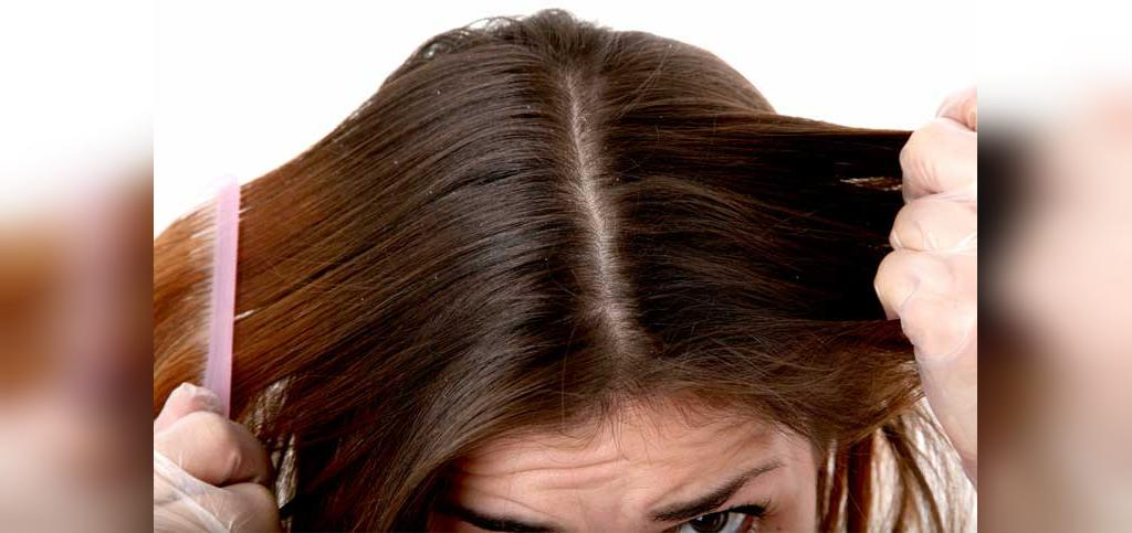 مهم ترین خواص کتیرا برای مو