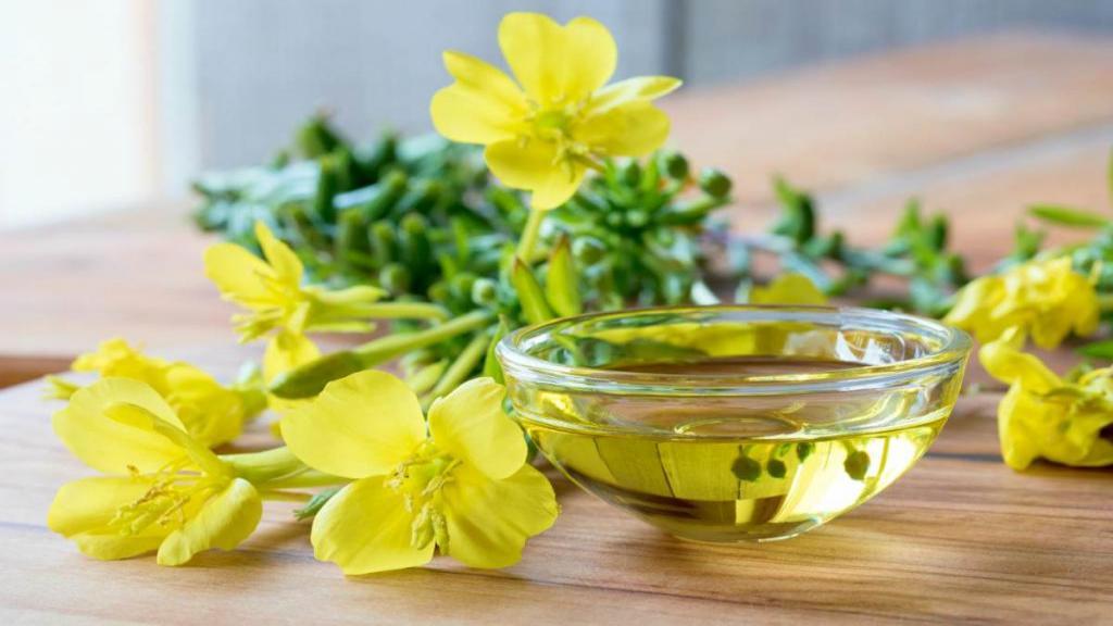 نکات اجمالی درباره روغن گل مغربی یا روغن گل پامچال