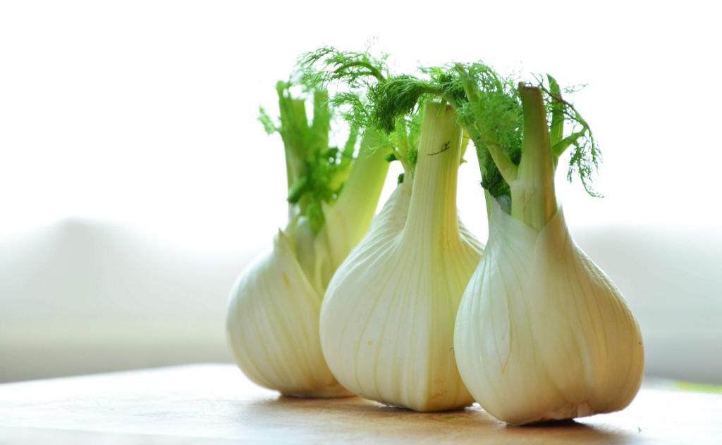 گیاه رازیانه چه شکلی است