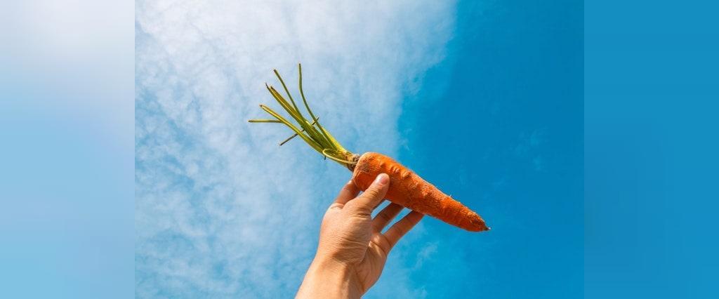 آیا می توان هویج را در فریزر نگهداشت؟