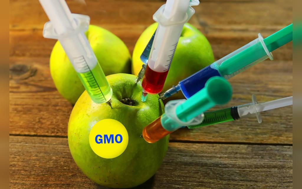 ایمنی GMO برای کودکان و نوزادان