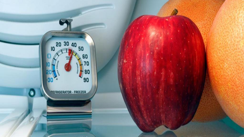 بهترین دمای مناسب یخچال برای جلوگیری از خراب شدن مواد غذایی