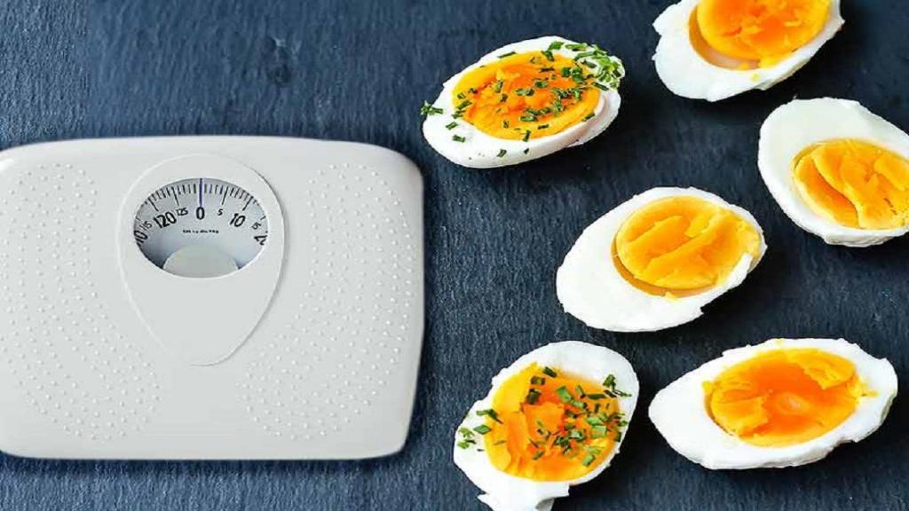 رژیم تخم مرغ چگونه به کاهش وزن کمک می کند؟ (رژیم تخم مرغ 14 روزه)