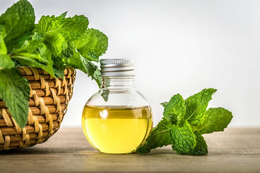 گیاهان کاهش دهنده سینوزیت