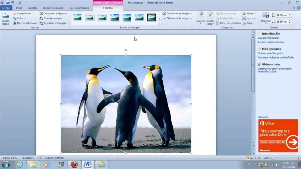 چگونه اندازه عکس را در ورد تغییر دهیم؛ تنظیمات عکس در ورد