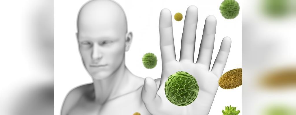 خاصیت های فلفل دلمه ای برای سلامتی، رشد مو و پوست