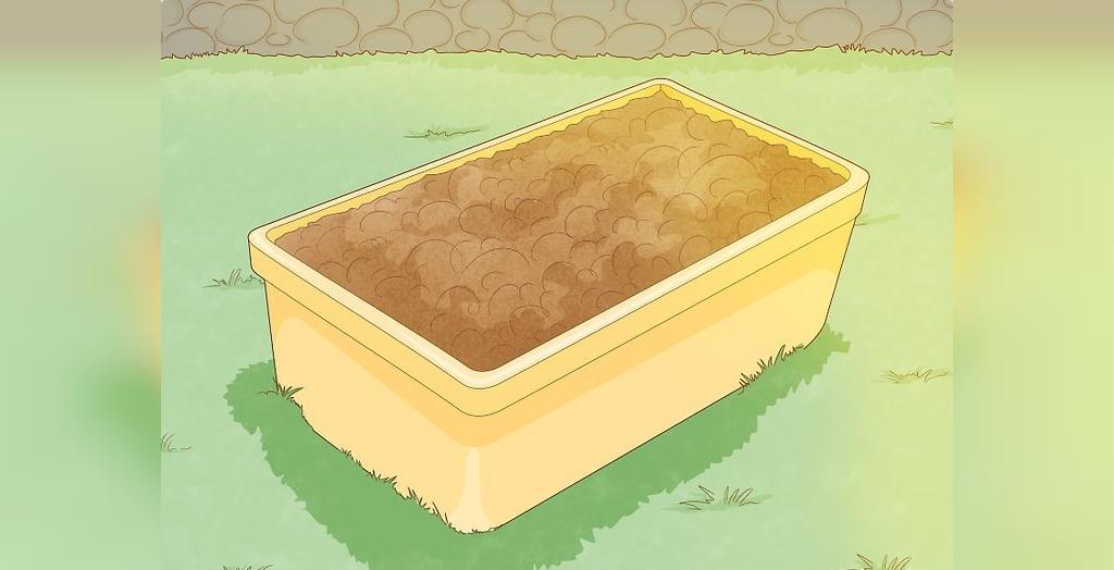 برای کاشت بیبی اسفناج، اسفناج ها را در آفتاب نسبی قرار دهید