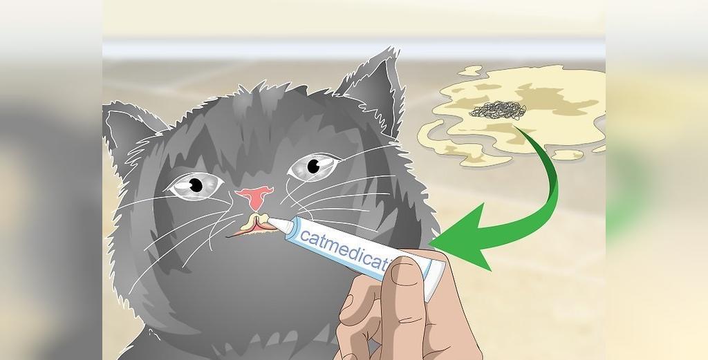 راه درمان تجمع مو در معده گربه