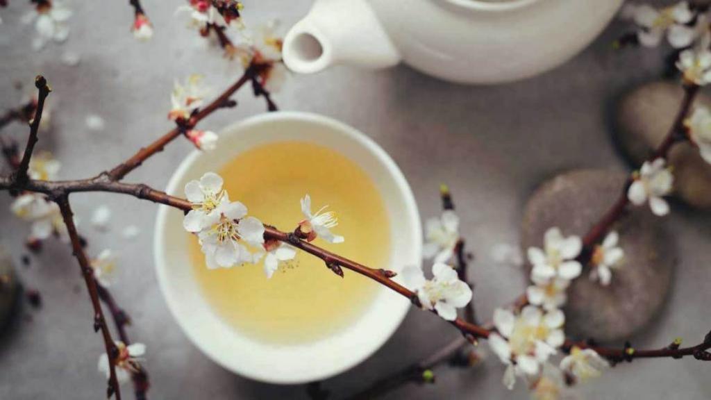 خواص شگفت انگیز چای سفید برای سلامتی، کنترل دیابت و کاهش وزن