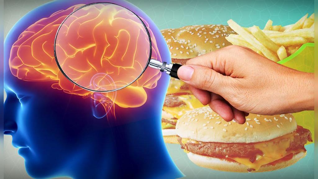چاقی چگونه بر مغز تاثیر می گذارد؟