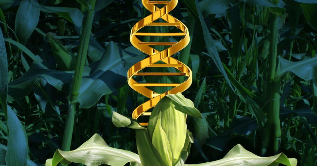 فواید اصلاح ژنتیک