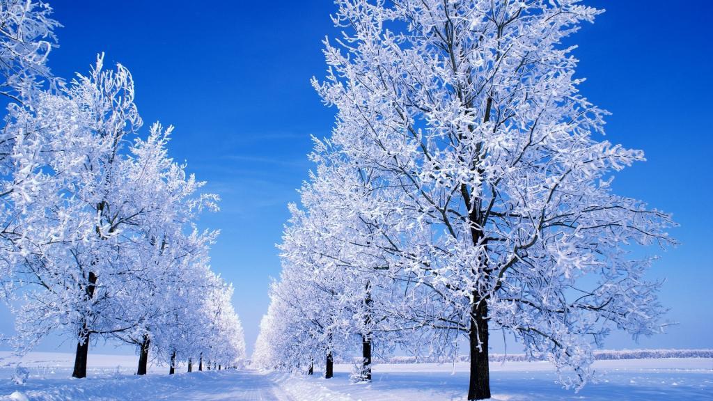 دلنوشته های زمستانی
