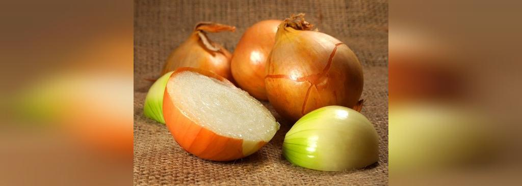 روش های تازه نگه داشتن میوه و سبزیجات