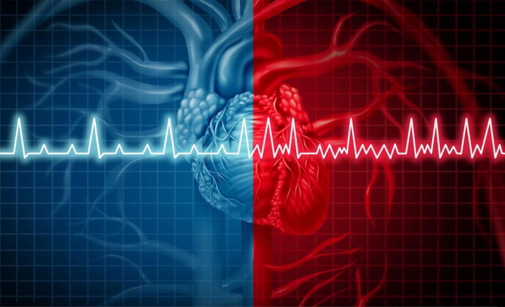 خواص و فواید کلسیم برای عملکرد قلب