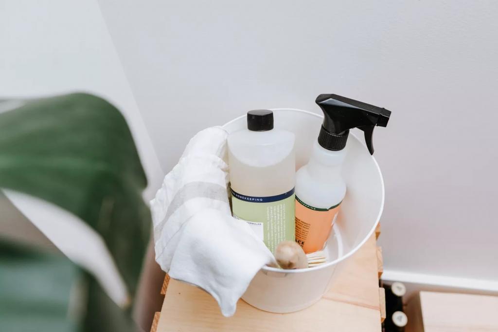 منابع مورد نیاز برای پاکسازی منزل بعد از بهبود بیماری