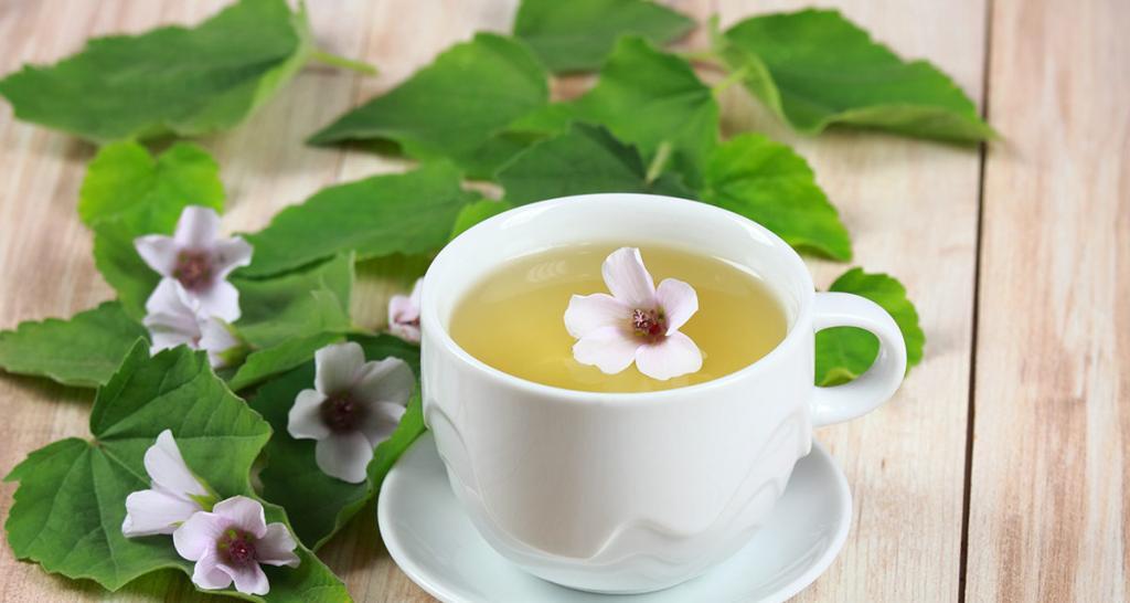 چای گل ختمی برای درمان یبوست