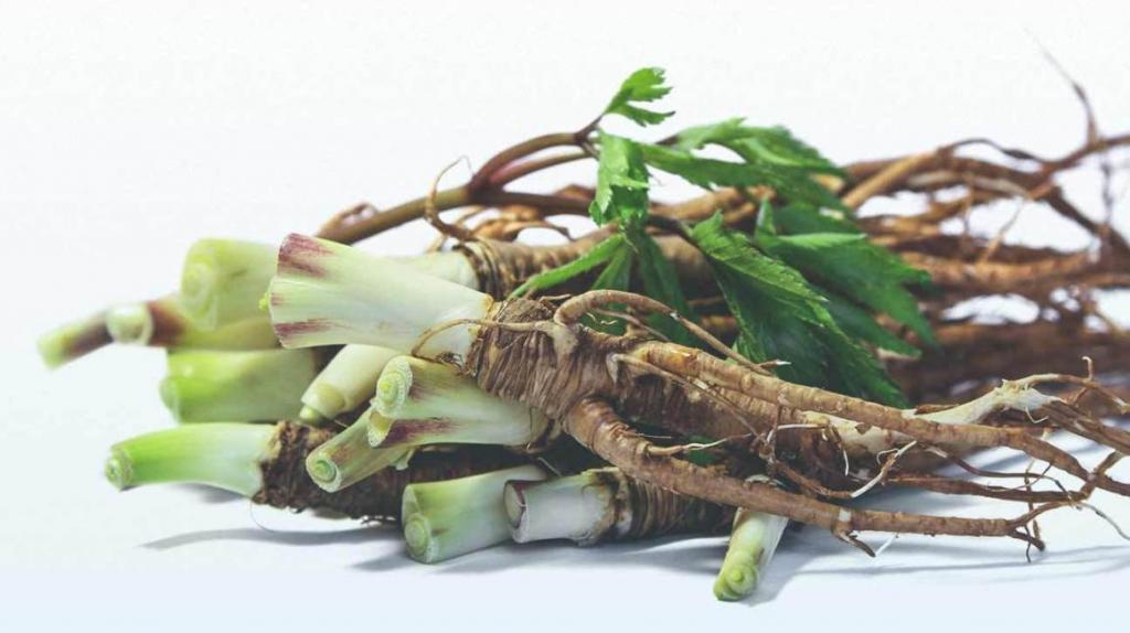 درمان گیاهی برای رفع علائم پیش از یائسگی