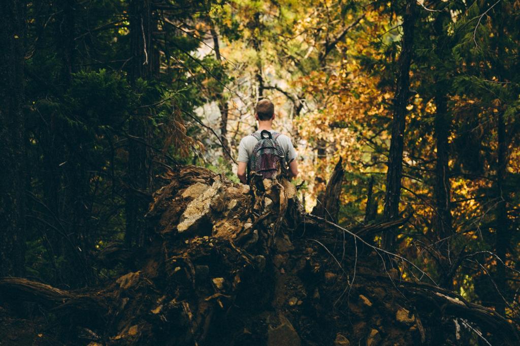 ژست عکس پاییزی مردانه در جنگل