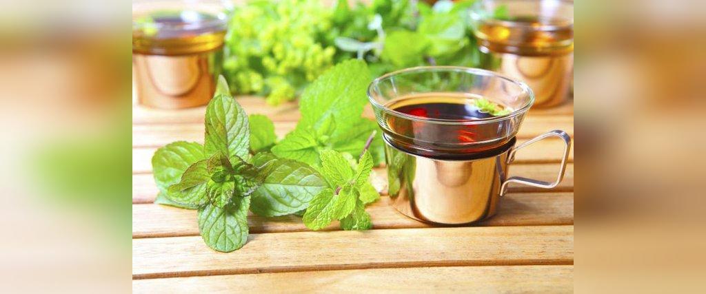 خواص دارویی و درمانی دمنوش چای نعنا