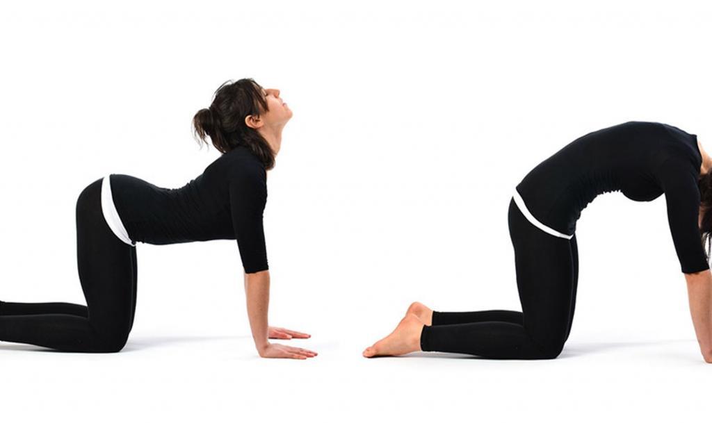 حرکت کششی برای از بین بردن کمر درد و درد پشت