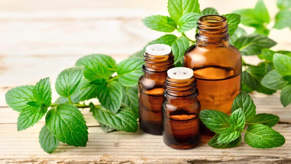 خواص چای و روغن نعناع برای تسکین سردرد