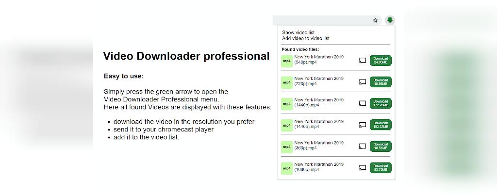 افزونه Video Downloader professional دانلود از یوتیوب