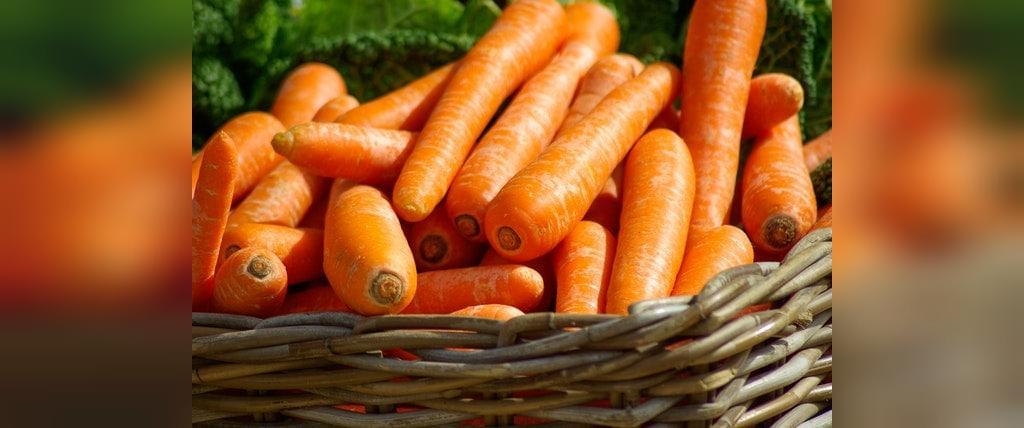 چه مدت می توان هویج را در یخچال نگهداری کرد؟