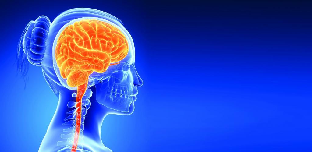 هیدروسفالی فشار طبیعی (NPH) از عوامل از دست دادن حافظه