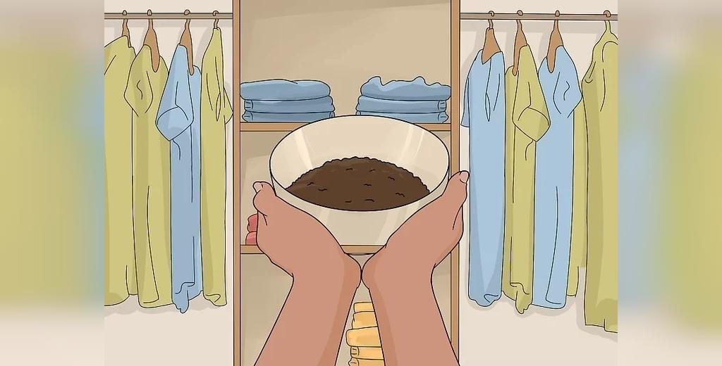 روش برطرف کردن بوی نم کمد لباس با قهوه