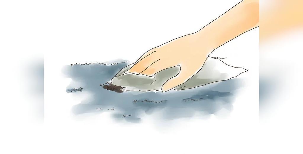 روش از بین بردن جوهر خودکار از روی فرش