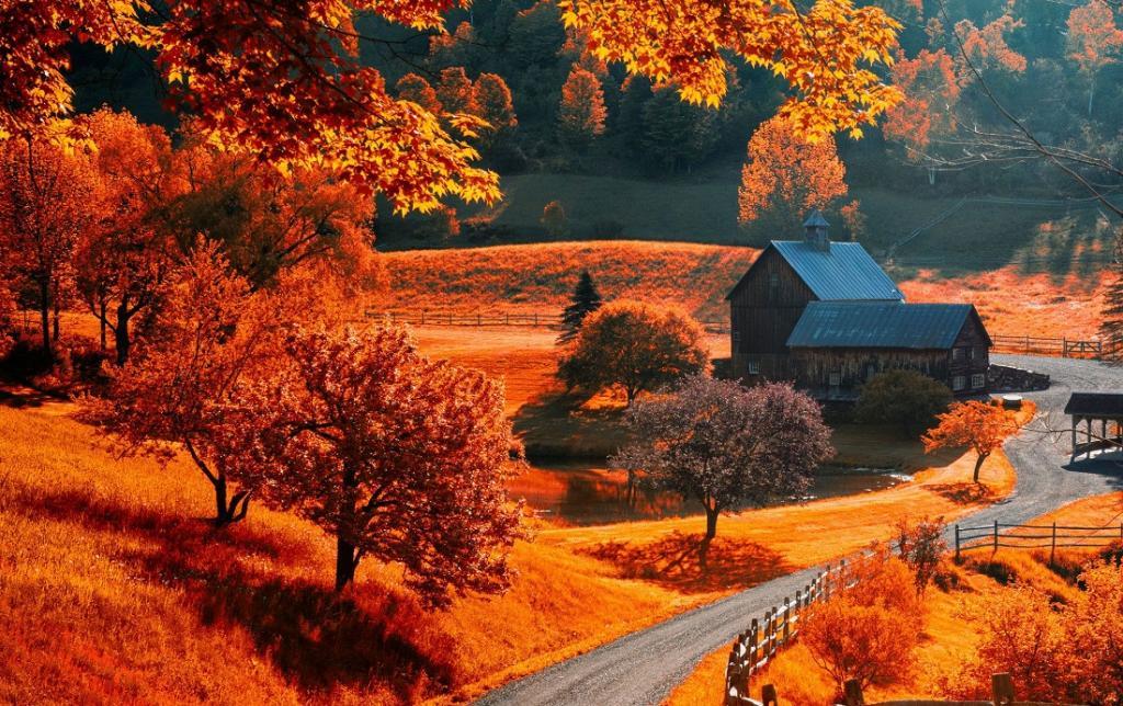 انشا ادبی در مورد فصل پاییز با مقدمه و نتیجه