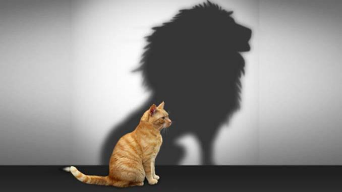 اصول ساده برای رسیدن به اعتماد به نفسی همیشگی