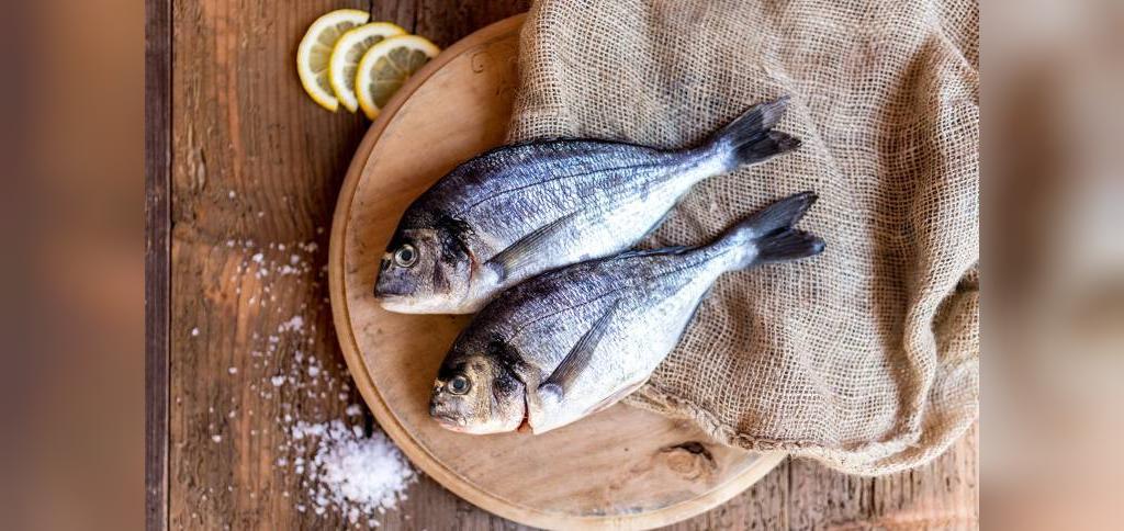 چرا ماهی بو می دهد؟