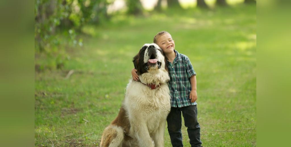 قوی ترین نژاد سگ دنیا