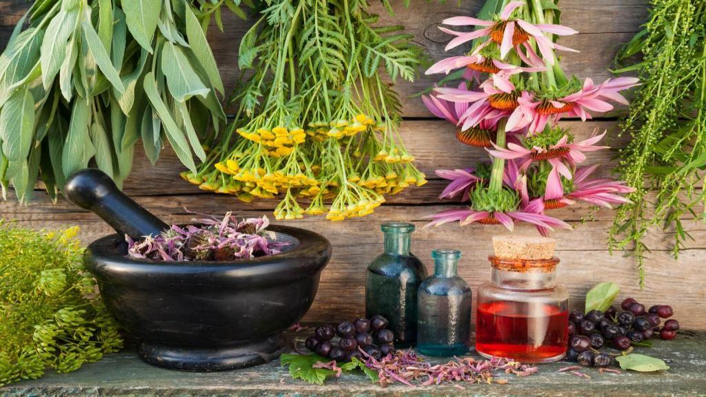 درمان بی خوابی در طب سنتی؛ دمنوش ها و گیاهان دارویی برای درمان بی خوابی