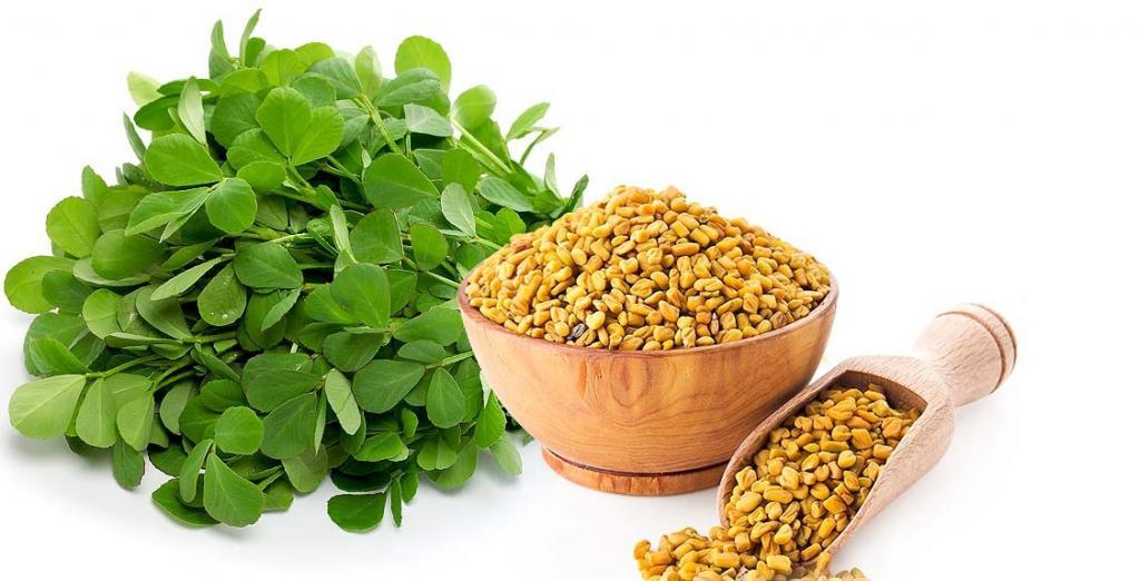 مزایای مصرف شنبلیله در طب سنتی