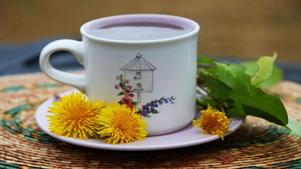 طرز تهیه چای قاصدک (با ریشه و برگ گیاه) + خواص چای قاصدک برای سلامتی