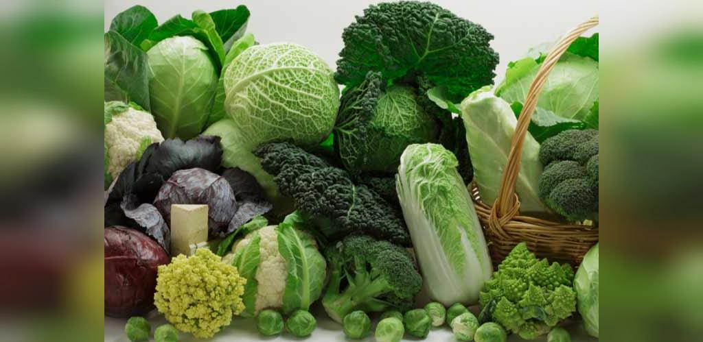 درمان هضم نشدن غذا در معده با خوراکی های طبیعی