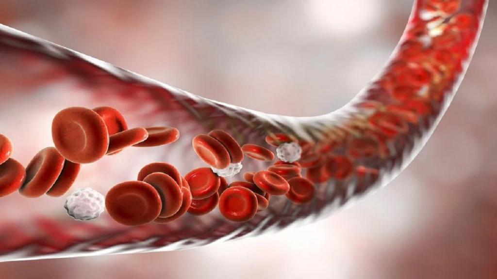 آزمایش RBC چیست؛ بررسی کامل تست شمارش گلبول های قرمز خون