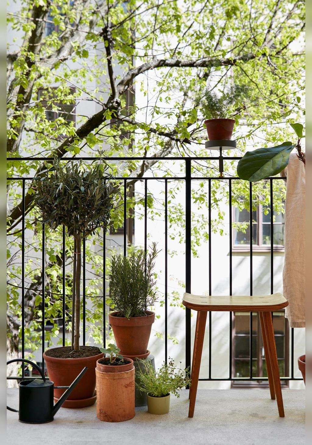 تزیین تراس و بالکن با ایجاد یک باغچه از گیاهان