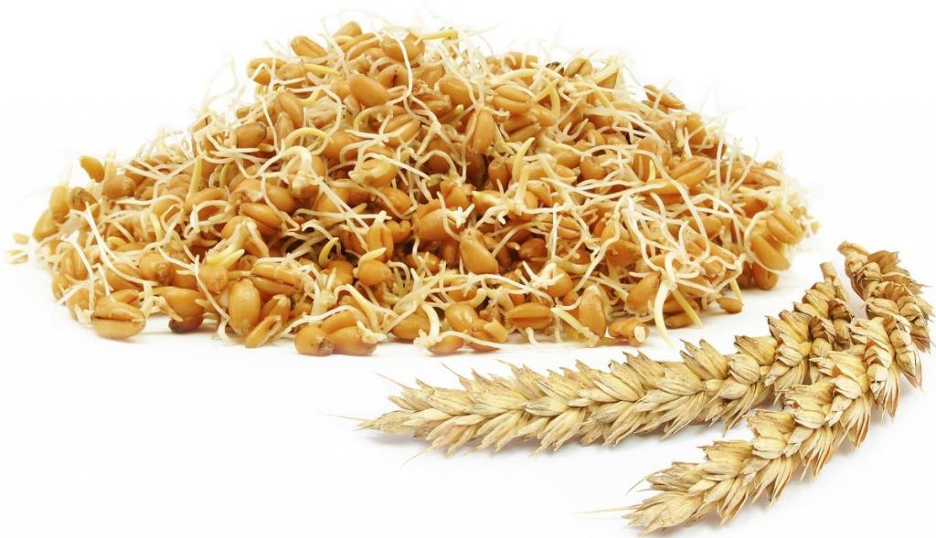 خواص جوانه گندم برای زنان باردار