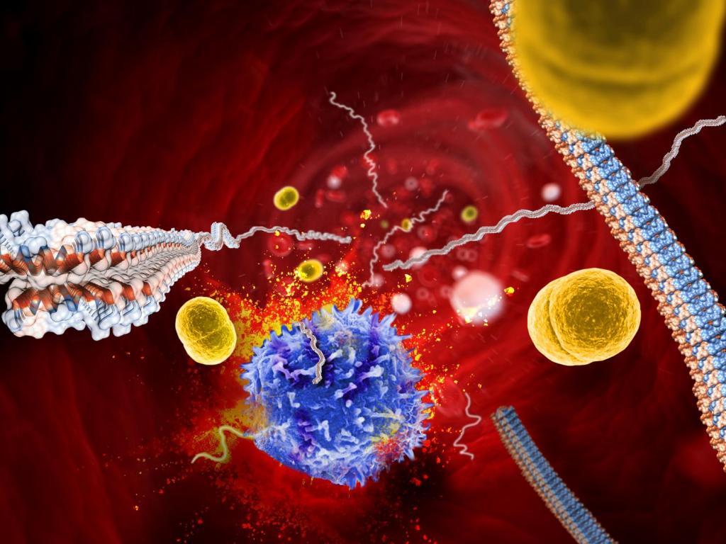 عوارض صابون های ضد باکتری