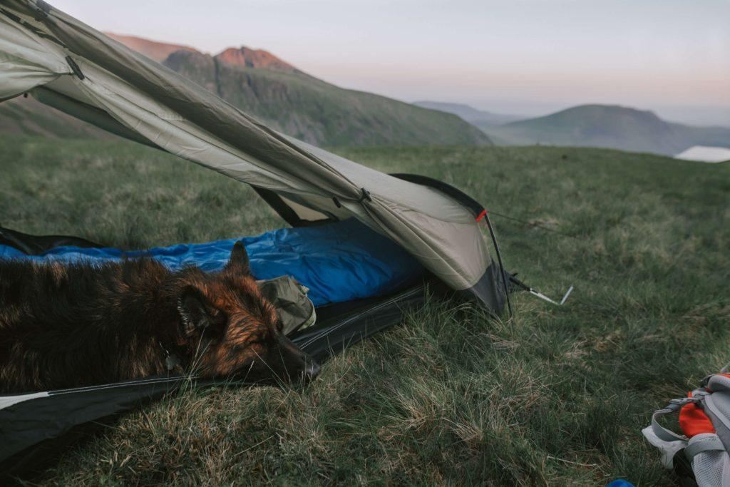 کمپ زدن بدون چادر