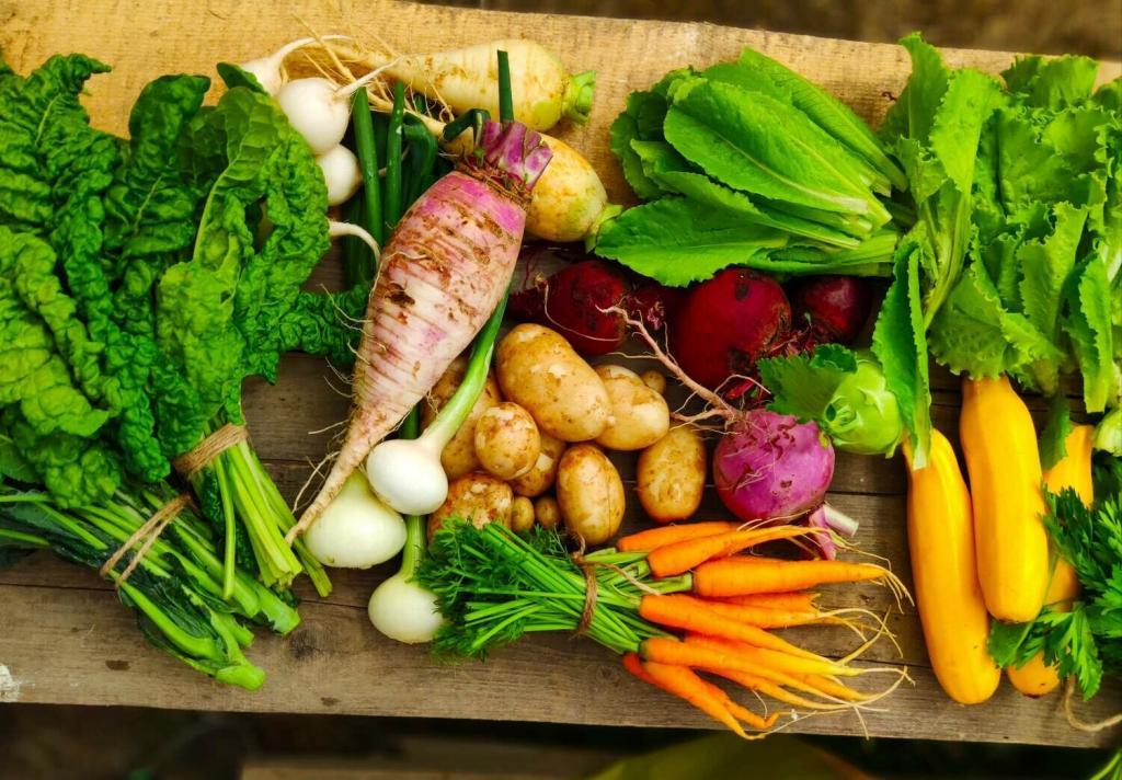 غذاهایی که باید در رژیم غذایی غلات مصرف کنید