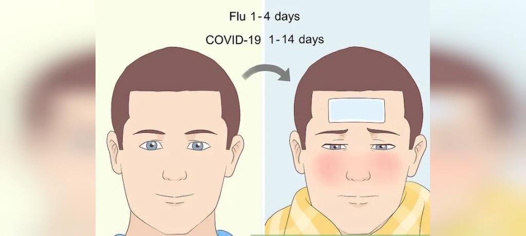 تفاوت بین آنفولاانزا و کوید-19
