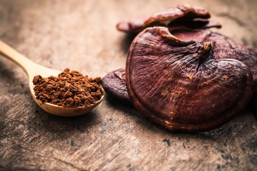 مهمترین ترکیبات فعال قارچ گانودرما