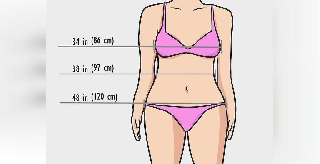 معرفی تمامی فرم های بدن زنان و مردان