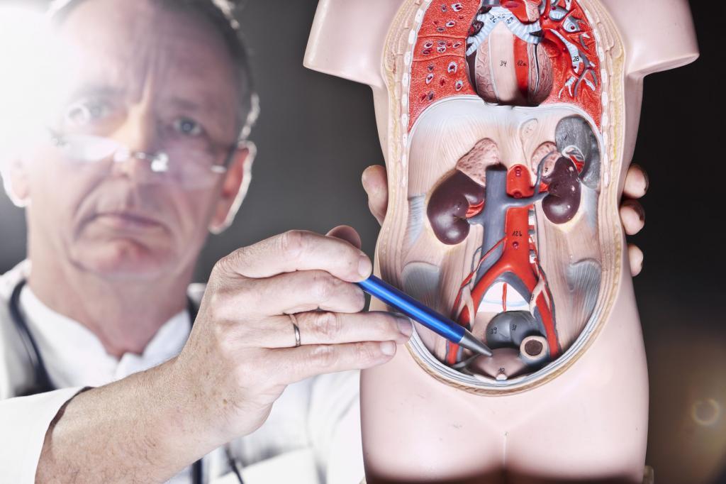 پروستاتیت، دلایل اصلی ناباروری مردان