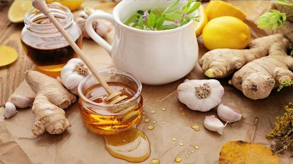 7 مورد از بهترین آنتی بیوتیک های طبیعی موثر (بهترین گیاهان دارویی برای مقابله با عفونت)